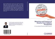 Buchcover von Meaning and Essence of Divorce from Addict's Perspective