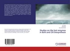 Bookcover of Studies on the last enzymes in Bchl and Chl biosynthesis