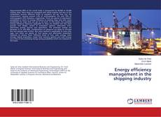 Bookcover of Energy efficiency management in the shipping industry