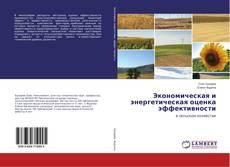 Bookcover of Экономическая и энергетическая оценка эффективности