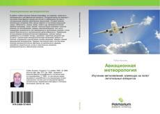 Bookcover of Авиационная метеорология