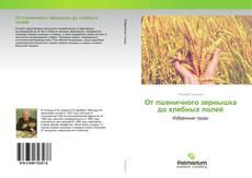 Bookcover of От пшеничного зернышка до хлебных полей