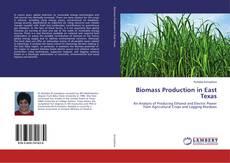 Biomass Production in East Texas kitap kapağı