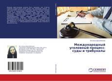 Bookcover of Международный уголовный процесс: суды и трибуналы
