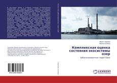 Bookcover of Комплексная оценка состояния экосистемы озер