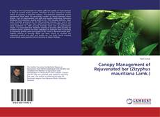 Bookcover of Canopy Management of Rejuvenated ber (Zizyphus mauritiana Lamk.)