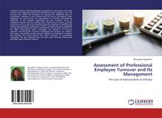 Bookcover of Assessment of Professional Employee Turnover and Its Management