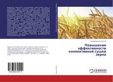 Bookcover of Повышение эффективности конвективной сушки зерна