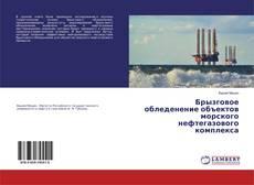 Bookcover of Брызговое обледенение объектов морского нефтегазового комплекса