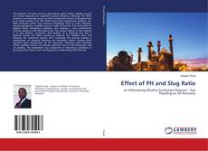 Bookcover of Effect of PH and Slug Ratio