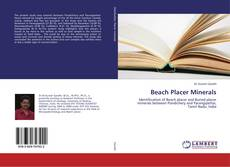 Bookcover of Beach Placer Minerals