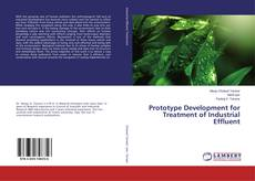 Bookcover of Prototype Development for Treatment of Industrial Effluent
