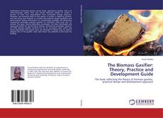 The Biomass Gasifier: Theory, Practice and Development Guide的封面