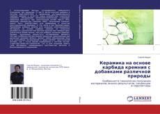 Bookcover of Керамика на основе карбида кремния с добавками различной природы