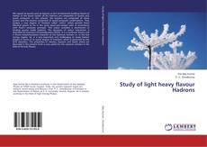 Copertina di Study of light heavy flavour Hadrons