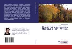 Bookcover of Хозяйство в имениях на Полесье в 1861—1914 гг.