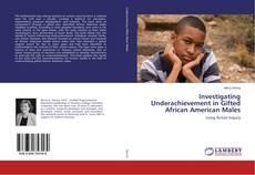 Buchcover von Investigating Underachievement in Gifted African American Males