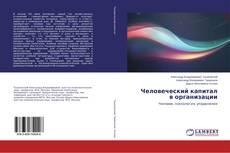 Capa do livro de Человеческий капитал в организации