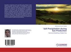 Capa do livro de Salt Precipitation during Gas Production