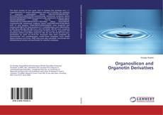 Organosilicon and Organotin Derivatives的封面