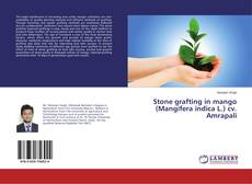 Couverture de Stone grafting in mango (Mangifera indica L.) cv. Amrapali