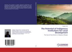 The Potential of Indigenous Institutions for Local Development的封面