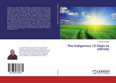 Capa do livro de The Indigenous 12 Steps to sobriety