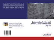 Buchcover von Deterioration Problems of Ankara Castle Andesite and Marble
