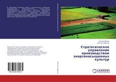 Bookcover of Стратегическое управление производством энергонасыщенных культур
