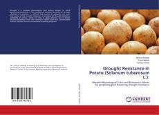 Drought Resistance in Potato (Solanum tuberosum L.):的封面
