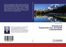Bookcover of Северный Таджикистан: история становления