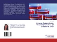 Bookcover of Dexamethasone in the transdifferentiation of pancreatic buds