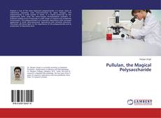 Pullulan, the Magical Polysaccharide kitap kapağı