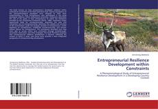 Borítókép a  Entrepreneurial Resilience Development within Constraints - hoz