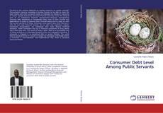Copertina di Consumer Debt Level Among Public Servants