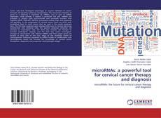Capa do livro de microRNAs: a powerful tool for cervical cancer therapy and diagnosis