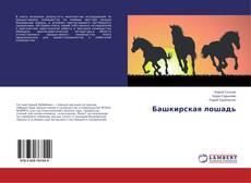 Башкирская лошадь的封面
