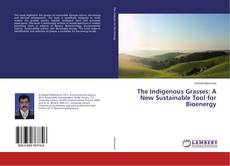 Buchcover von The Indigenous Grasses: A New Sustainable Tool for Bioenergy