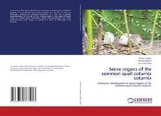 Sense organs of the common quail coturnix coturnix的封面