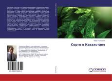 Bookcover of Сорго в Казахстане