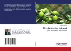 Olive Cultivation in Egypt kitap kapağı