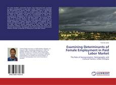Couverture de Examining Determinants of Female Employment in Paid Labor Market