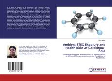 Bookcover of Ambient BTEX Exposure and Health Risks at Gorakhpur, India
