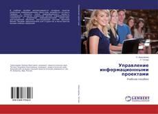 Bookcover of Управление информационными проектами
