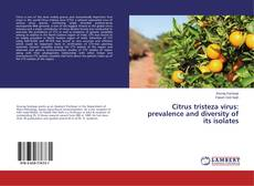 Borítókép a  Citrus tristeza virus: prevalence and diversity of its isolates - hoz