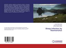 Copertina di Sheep infection by Haemonchus