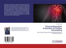 Bookcover of Echocardiographic Evaluation of Cardiac Remodeling