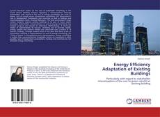 Buchcover von Energy Efficiency Adaptation of Existing Buildings