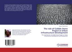 The role of Cobble Stone Project in Urban Infrastructure Development kitap kapağı