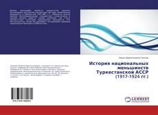 Portada del libro de История национальных меньшинств Туркестанской АССР (1917-1924 гг.)